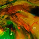 Amazing Colors by Corkle