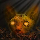 The cat from hell by QuintaVale