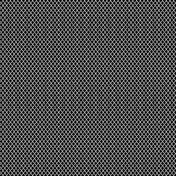 oriental pattern grid, black and white - seamless morocco background by ohaniki