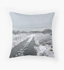 Winter Snow Scene Throw Pillow
