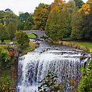 Websters Falls, Hamilton, Ontario, Canada.  by AnnDixon