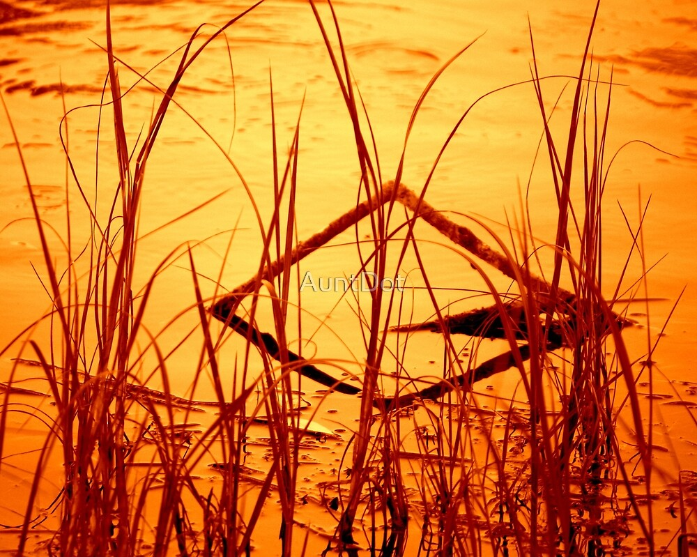 Diamond In the Reeds by AuntDot