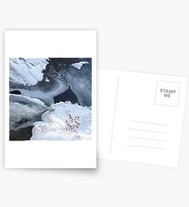 The Beach Postcards