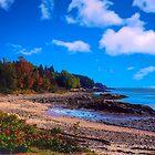 Acadia Beach by Nancy Richard