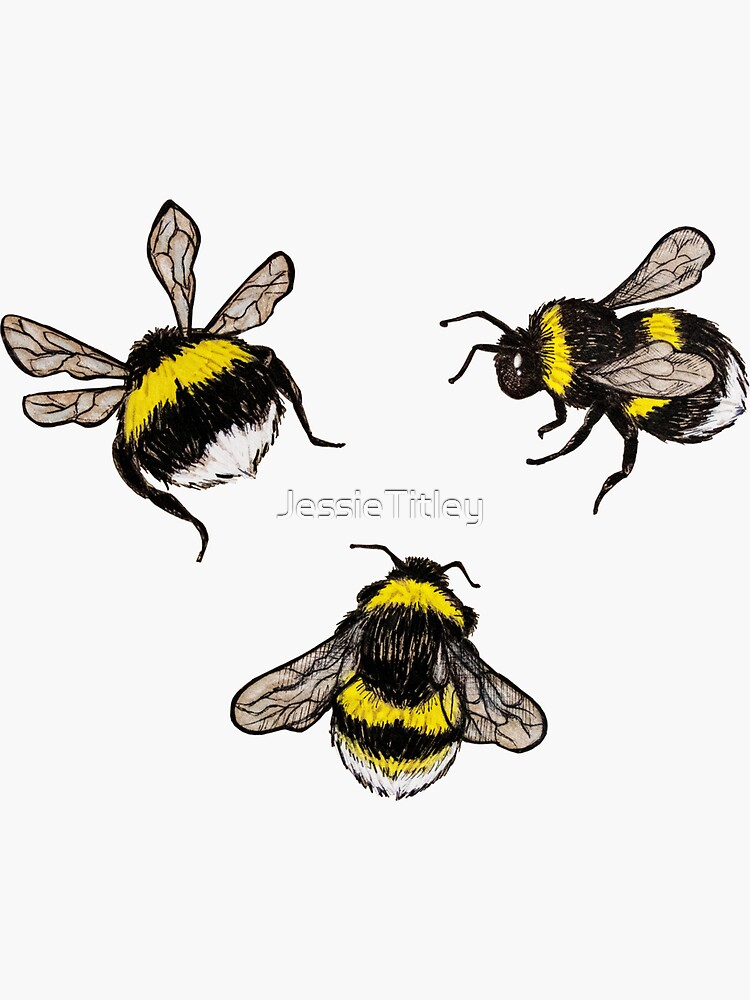 Bumblebees by JessieTitley