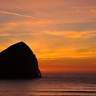 Sunset Flight by lucin