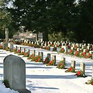 Cemetery at Gettysburg, Pennsylvania by Susan Russell