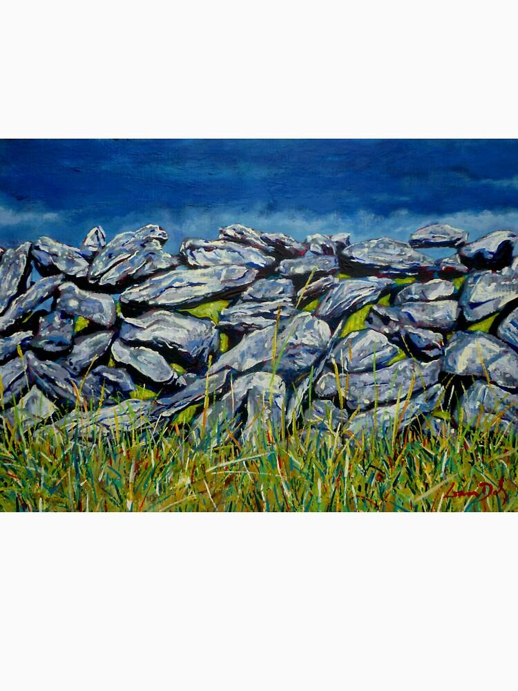 Burren Wall, Grafschaft Clare, Irland von eolai