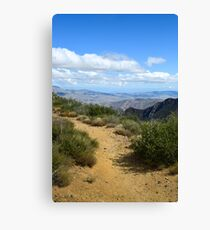 Penny Pines Trail, Anza-Borrego Desert State Park, California Canvas Print