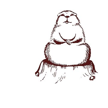 I Believe In Phil Funny Groundhog Day T-Shirt Gift:   6 More Weeks of Winter   Punxsutawney Phil   February 2nd   Arrival of Spring   by larspat