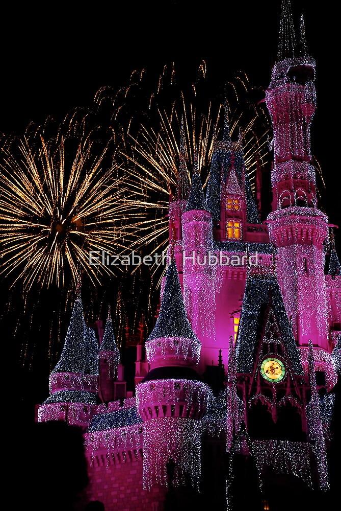 Fireworks in Pink by Elizabeth  Hubbard