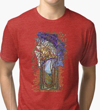 Sing for Joy - Psalm 86 Tri-blend T-Shirt
