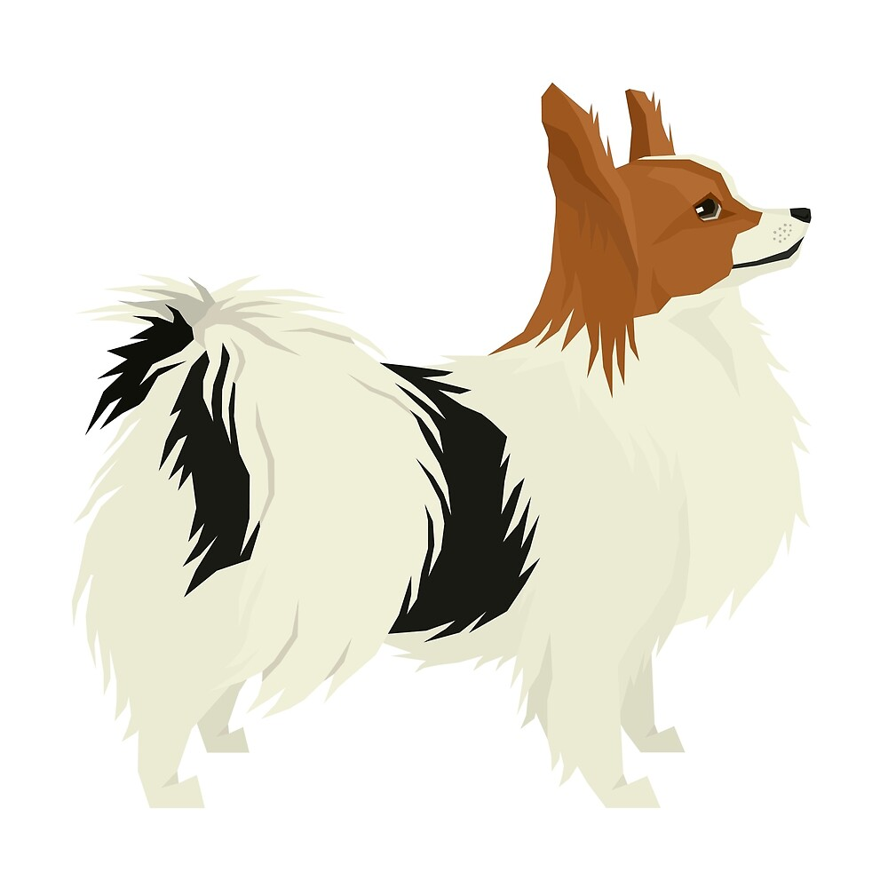 Papillon by Happy Dog Swag