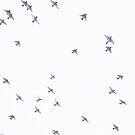 Cedar Waxwings im Flug von aldenofwapiti