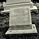 Grave of H. P. Lovecraft, Providence, Rhode Island by Pete Janes