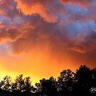 """""""Kansas Sunset""""  by Tyler Elbert"""