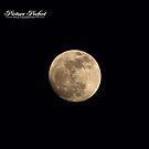 """""""Giant Moon""""  by Tyler Elbert"""