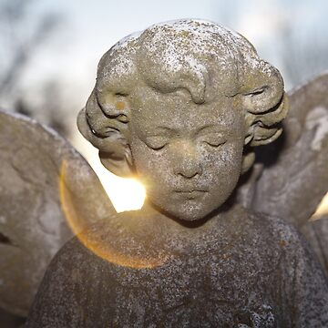 Cemetery Angel by jcmeyer