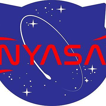 Programa espacial NYASA de Chikagi