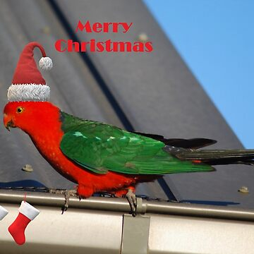 Christmas King Parrot 2 by GriffMAD