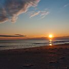 New Years Day, Oak Island by Jay White