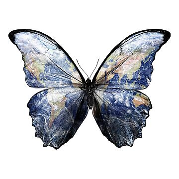 Morpho - Earth Butterfly by worn