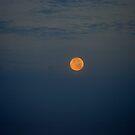Moon Fly By.... by Larry Llewellyn