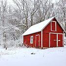 Beautiful Wisconsin winter nature background. by Maryna Gumenyuk