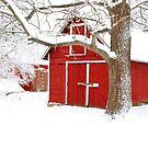 Beautiful Wisconsin snowy winter nature background. by Maryna Gumenyuk