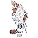 MorbidiTea - Hibiscus with Black Bear Skull by MicaelaDawn