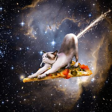 Cat on Pizza Flying in space with rocket sparks coming out of butt by biibee