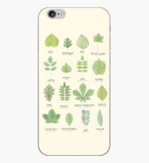 Leaf ID Chart iPhone Case