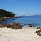 Island Beach by loz788