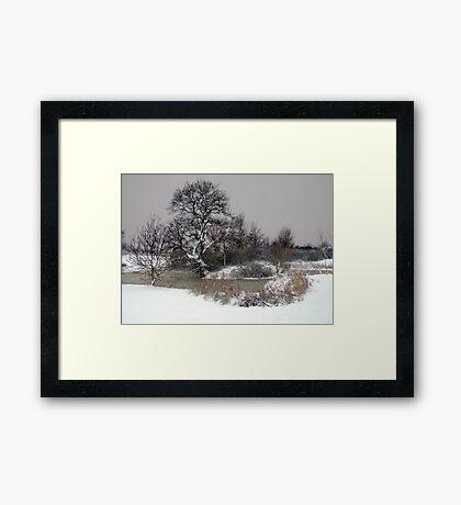 Winter Framed Print