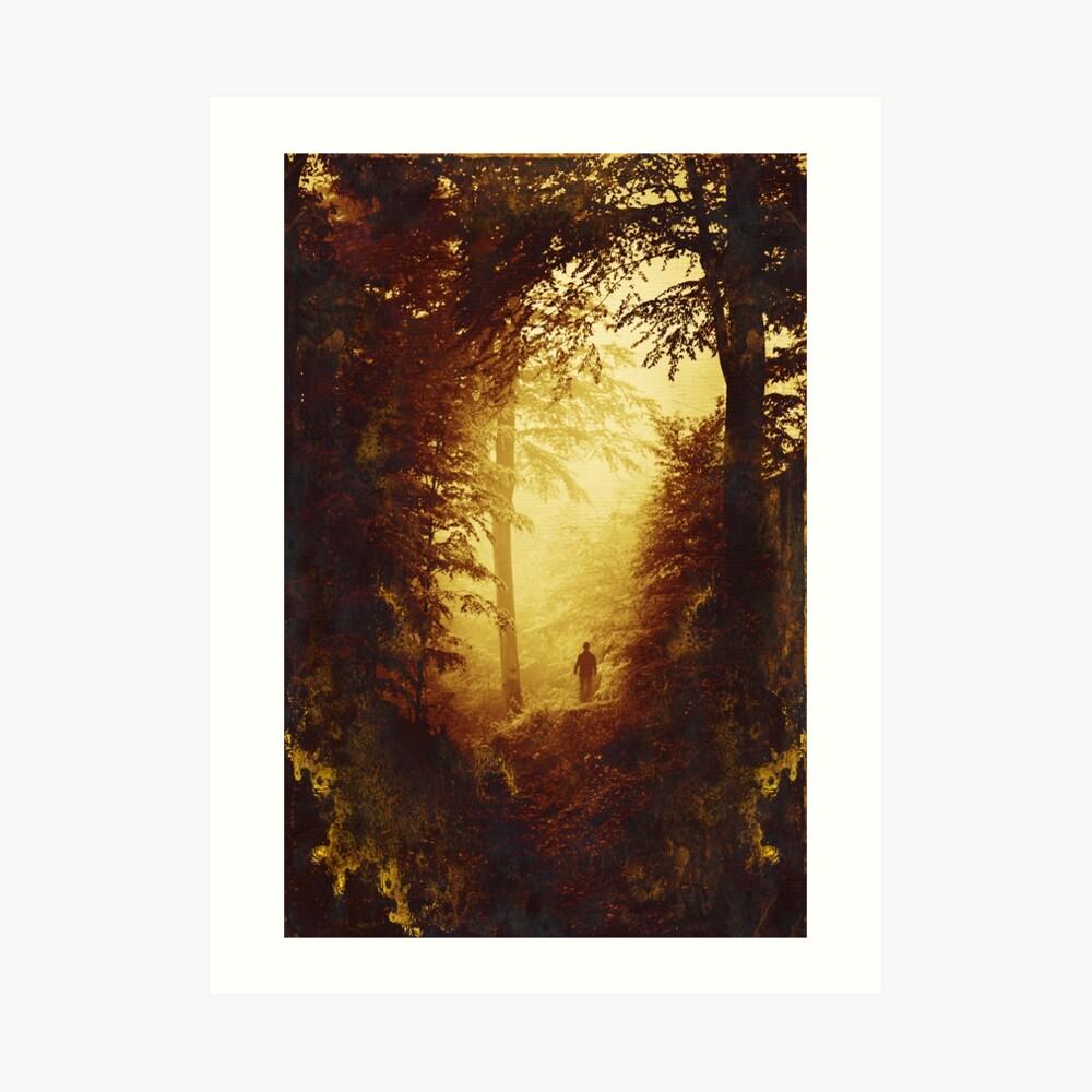 Light Seeker Art Print