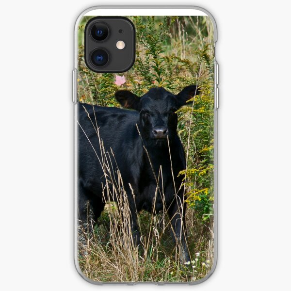 Cows 4 iPhone Soft Case