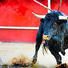 Bull by Fernando Cortés