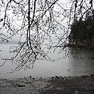 Coastal Rain by TerrillWelch