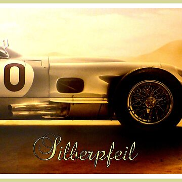 Silberpfeil ~ The Silver Arrow by angel1