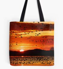 Snow Geese Flying at Sunrise Tote Bag