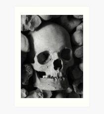 The Bone Collection Art Print
