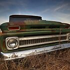 Abandoned Chevy C-10 (1) by mal-photography