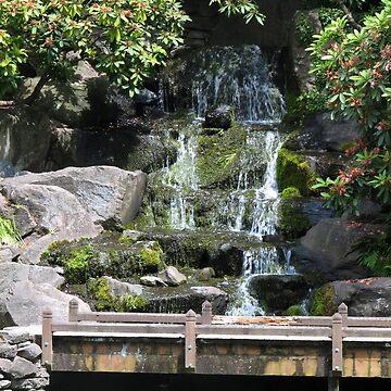 Crystal Springs water fall by DALock