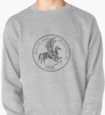 Skinny Peg Seal (Gray) Pullover