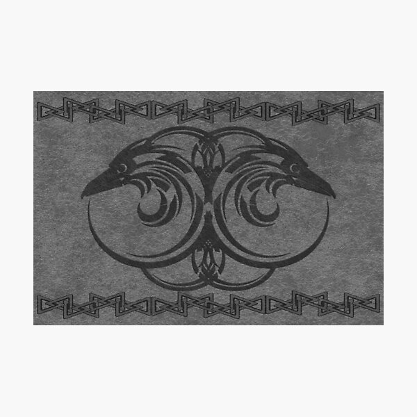 Hugin and Munin - Odin's all seeing eyes Photographic Print