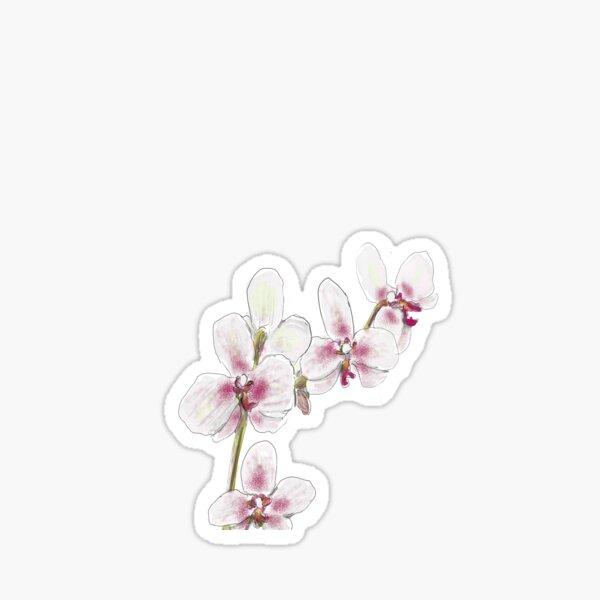 Orchid Design Sticker