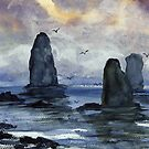 Cape Horn Overcast by Randy Sprout
