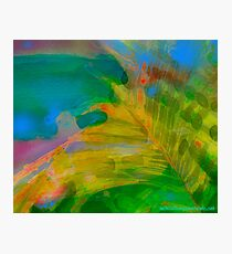 Abstract Palm Art Photographic Print