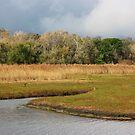 Stormy Tallow Creek by byronbackyard