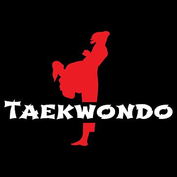 Taekwondo High Kicks Martial Arts - Gift Idea by vicoli-shirts
